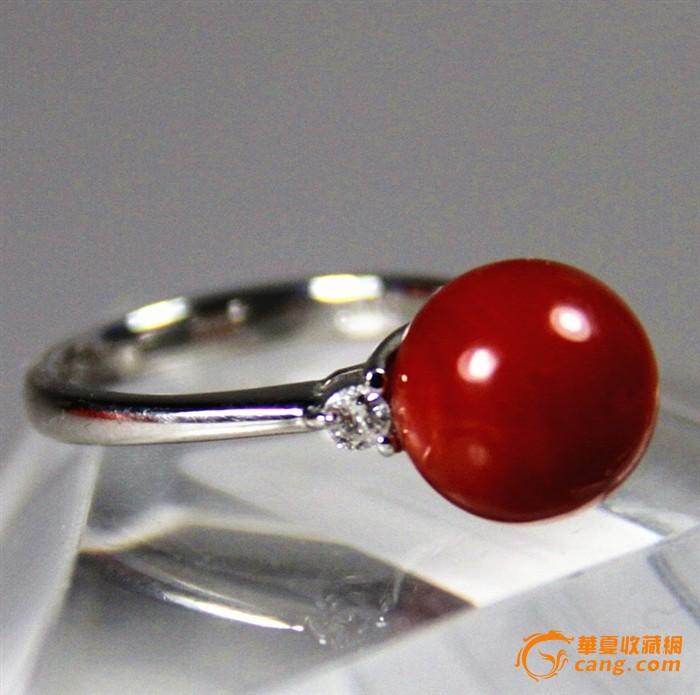 天然阿卡圆珠牛血红珊瑚pt900白金镶钻戒指