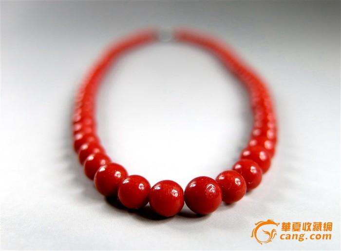 沙丁红珊瑚项链图1-在线竞价-图片|图库|价格